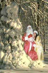 Как должен выглядеть Дед Мороз